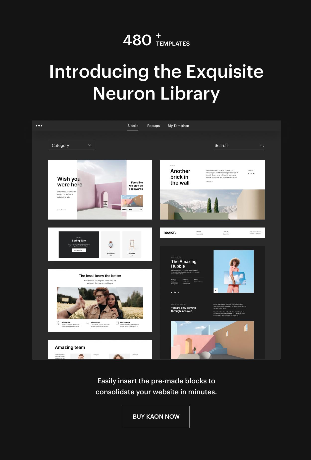 Kaon WordPress Theme - Neuron Library
